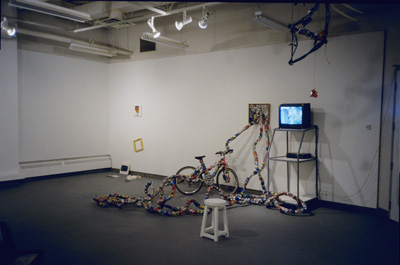 <i>Transforming Matters</i>, Sculptural Installation and video, Solo Show, The Little Gallery, Faculty of Fine Arts, University of Calgary, Alberta, Canada, 2002