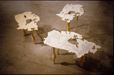 <i>Regarding Resources:  Turn the Tables</i>, 2001, wood, paper, pencils; with each table - 2 1/2 ' x 1 1'2 ' x 1 1/2', Part of <What is our Mark on the Earth?</i> show at the Little Gallery, U of C, Alberta